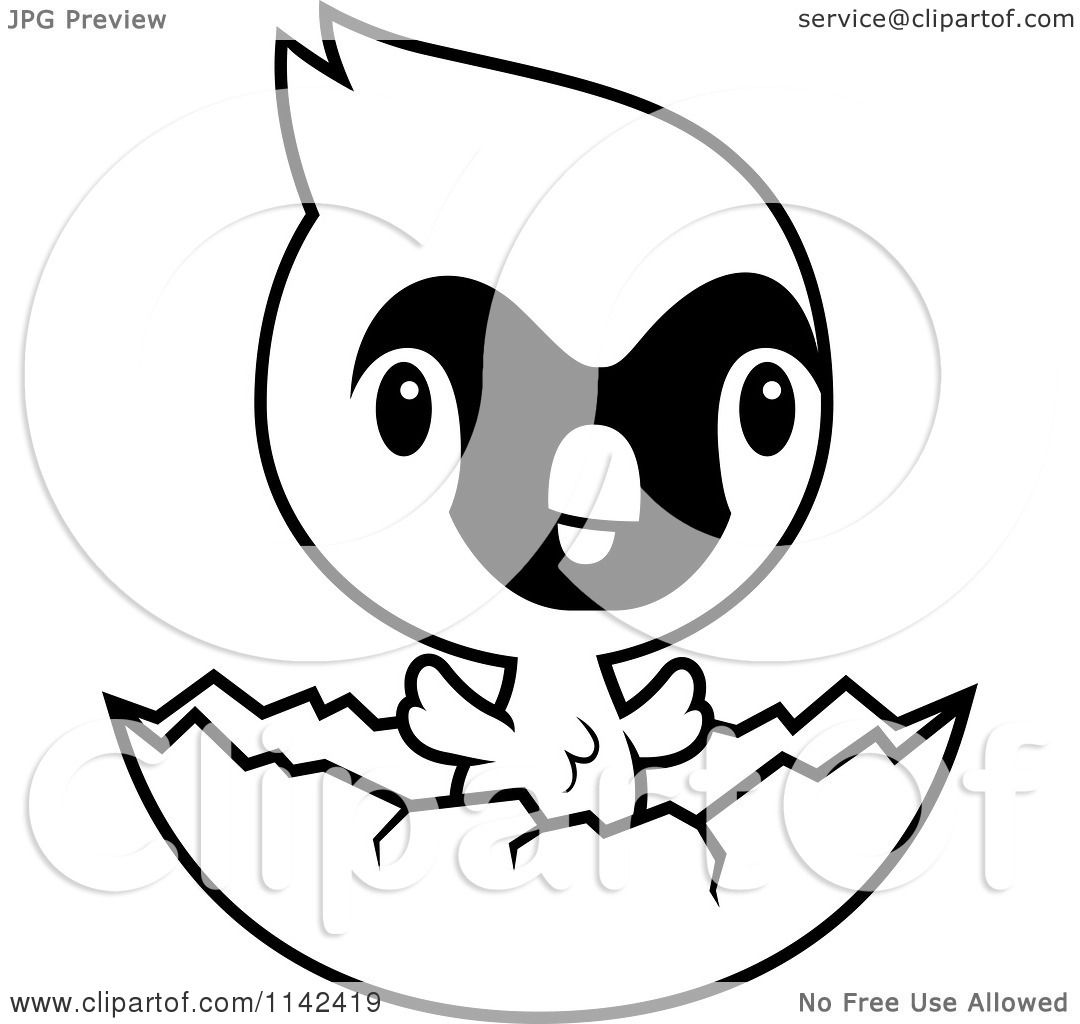 Cartoon Clipart Of A Black And White Cute Baby Cardinal