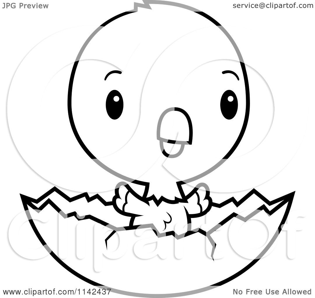 Cartoon Clipart Of A Black And White Cute Baby Parrot In An Egg Shell