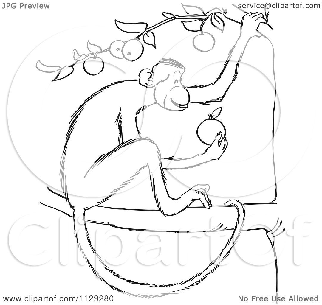 printable monkey coloring pages coloring me. on the paint ...