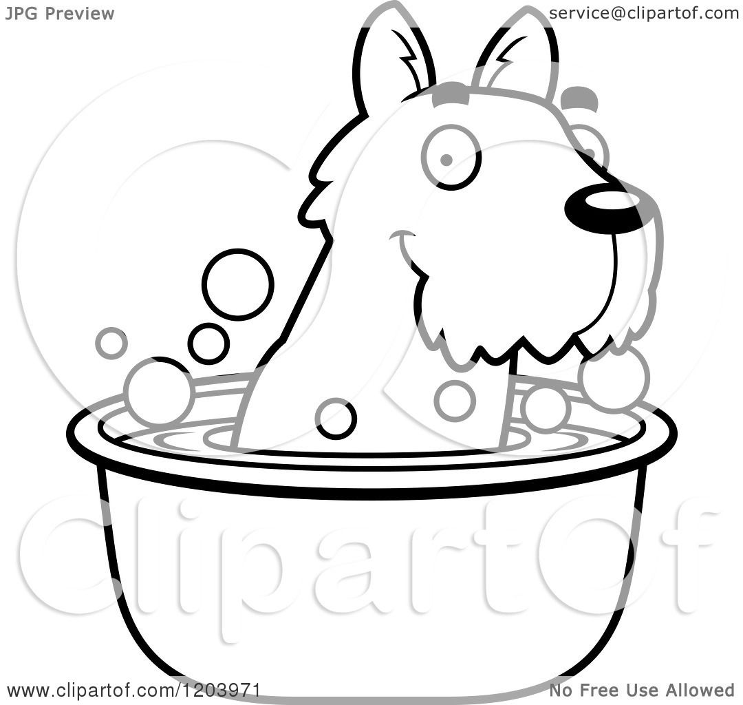 Cartoon Of A Black And White Cute Scottish Terrier Puppy Taking A Bath