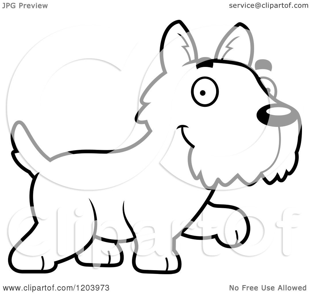 Cartoon Of A Black And White Cute Scottish Terrier Puppy