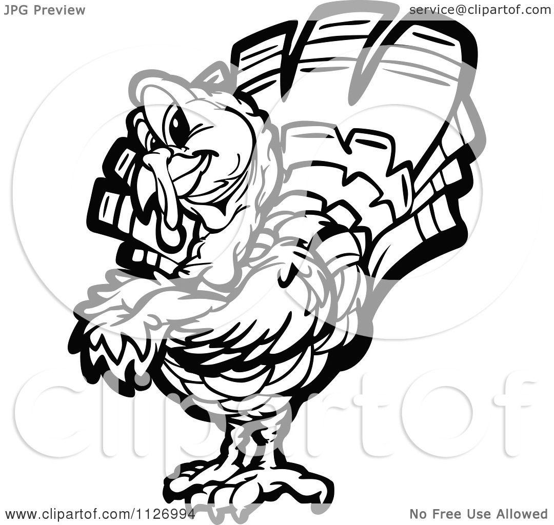 Cartoon Of A Black And White Turkey Bird Mascot With