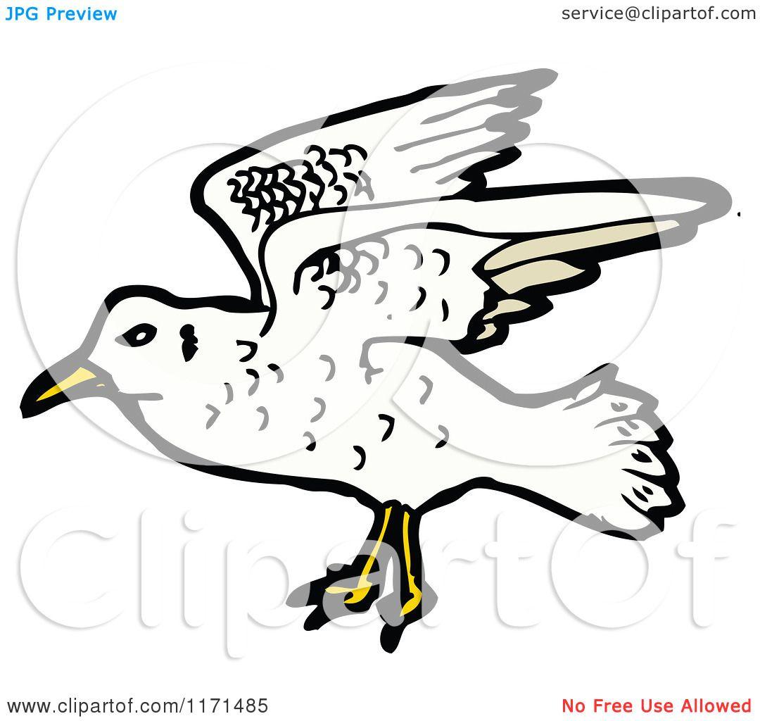 Cartoon Of A Seagull