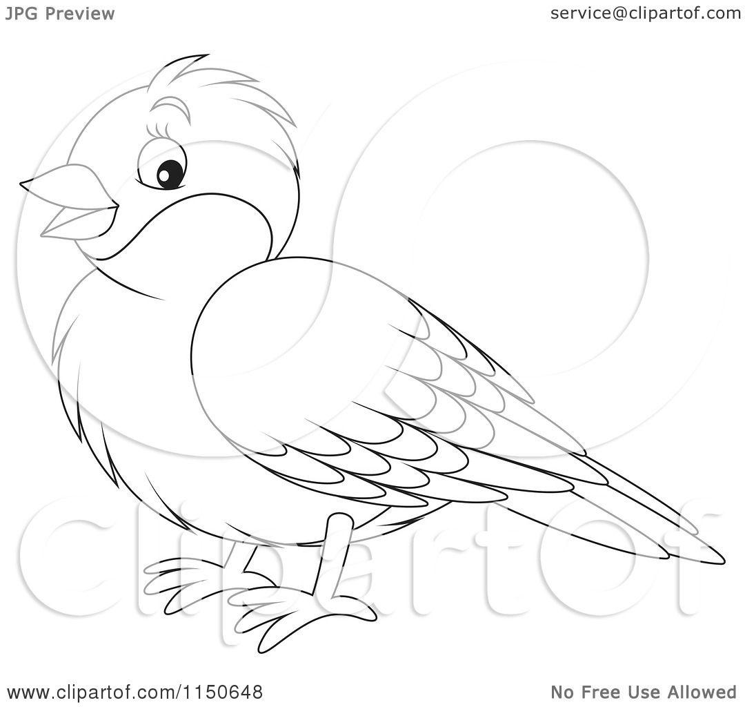 Cartoon Of An Outlined Robin Bird