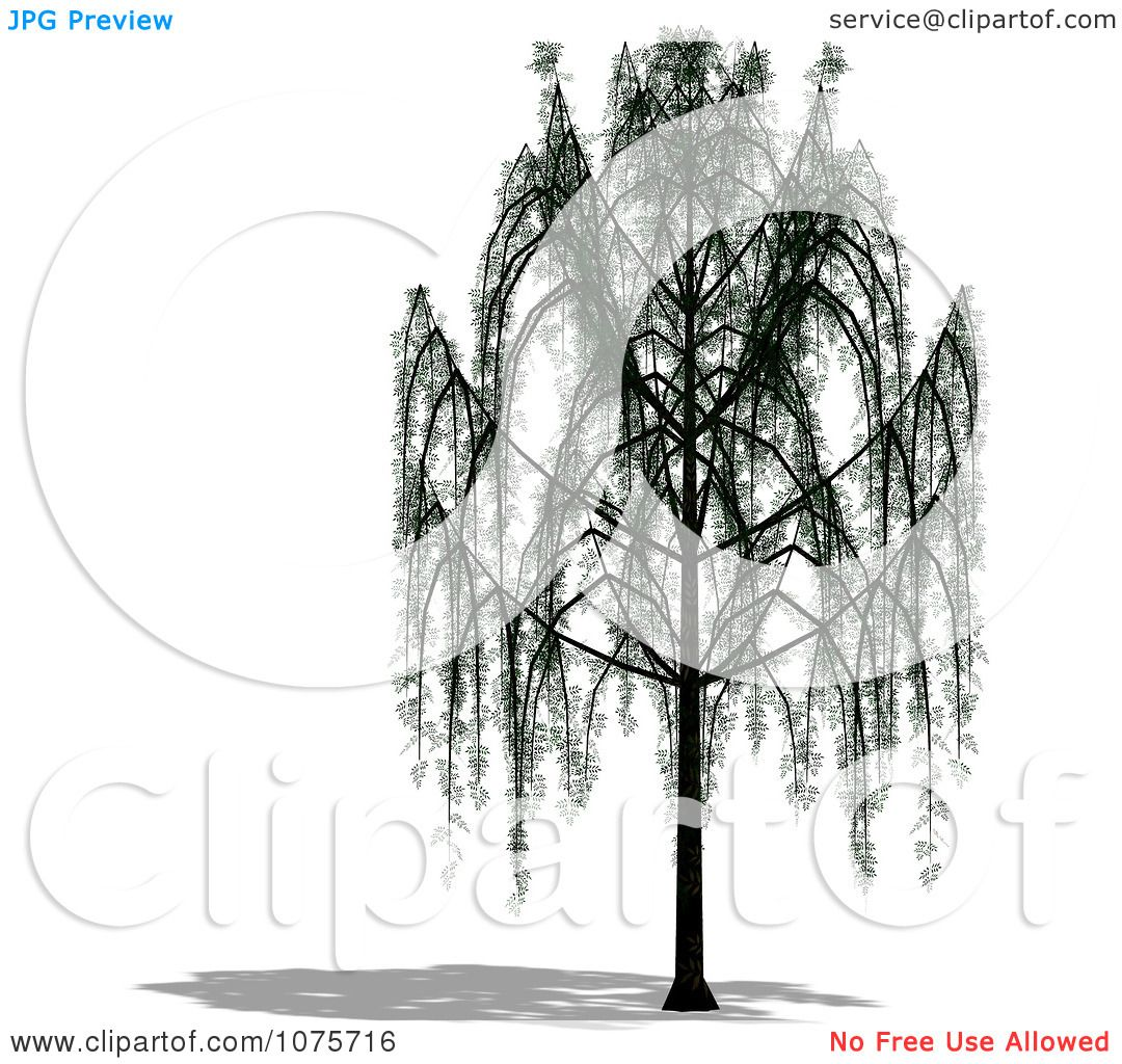Clipart 3d Willow Tree