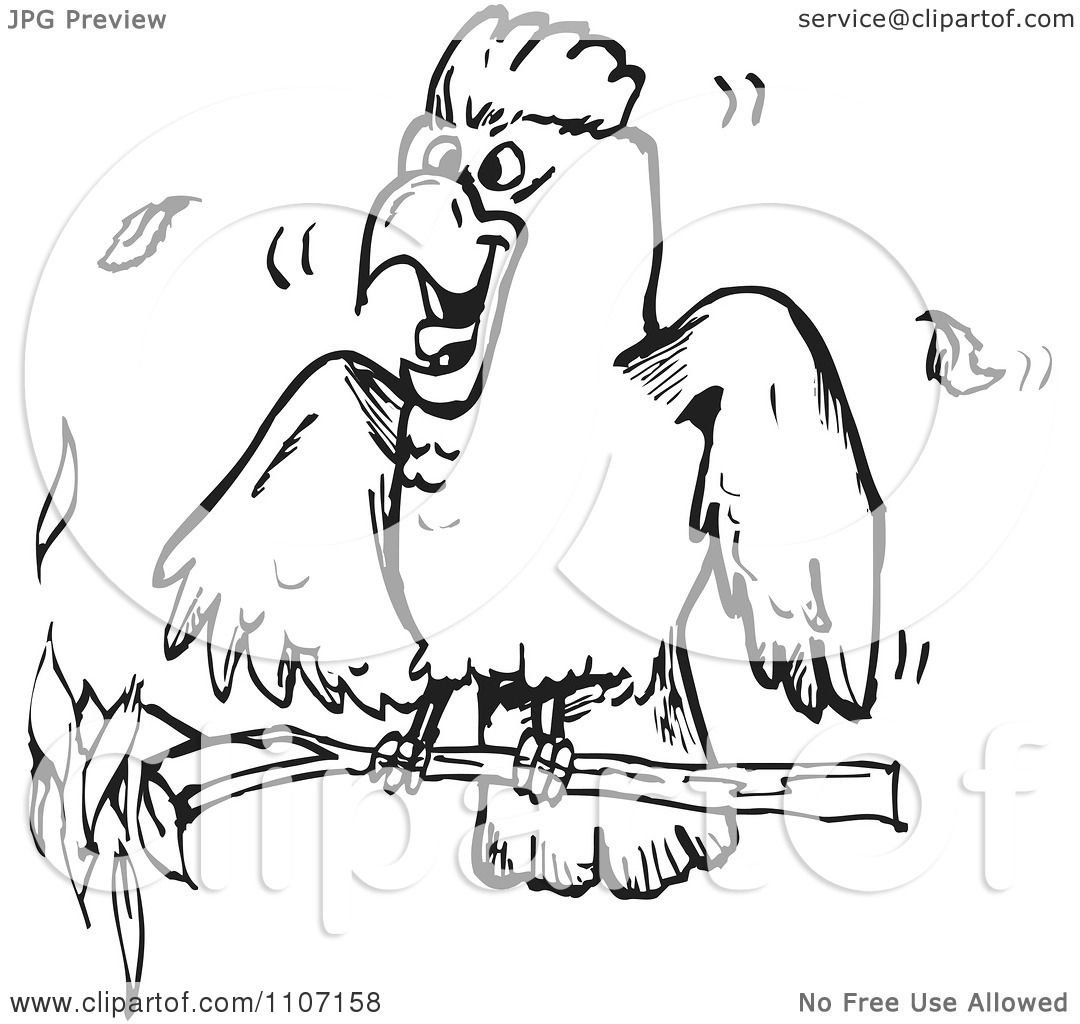 Clipart Excited Black And White Cockatoo On A Branch