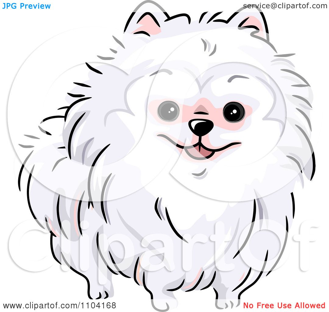 Clipart Happy White Pomeranian Dog