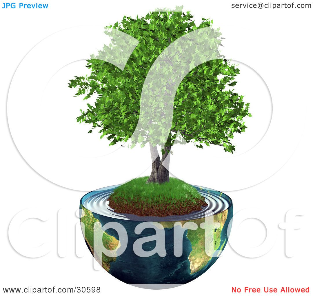 clipart illustration of a realistic 3d tree with lush green leaves