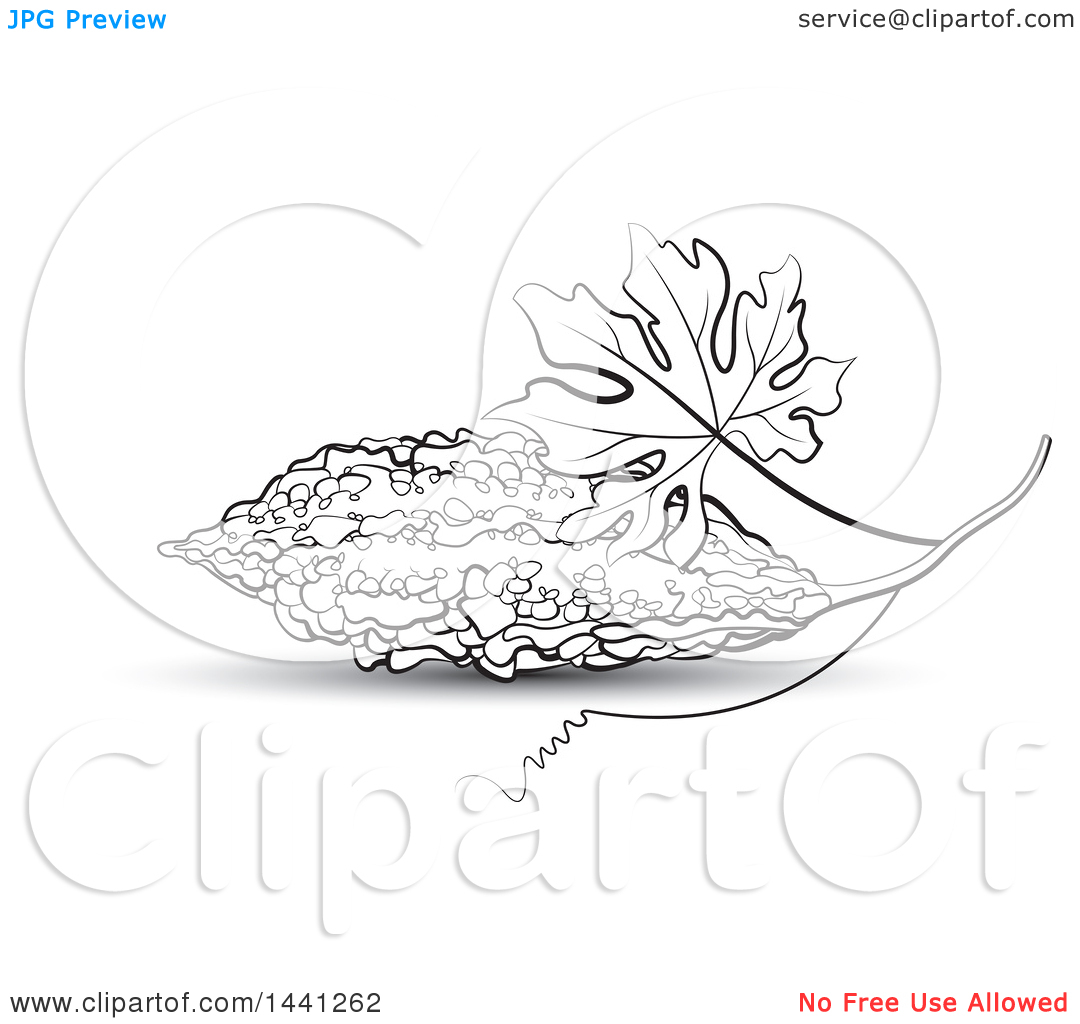 Clipart Of A Black And White Bitter Gourd Melon And Leaf