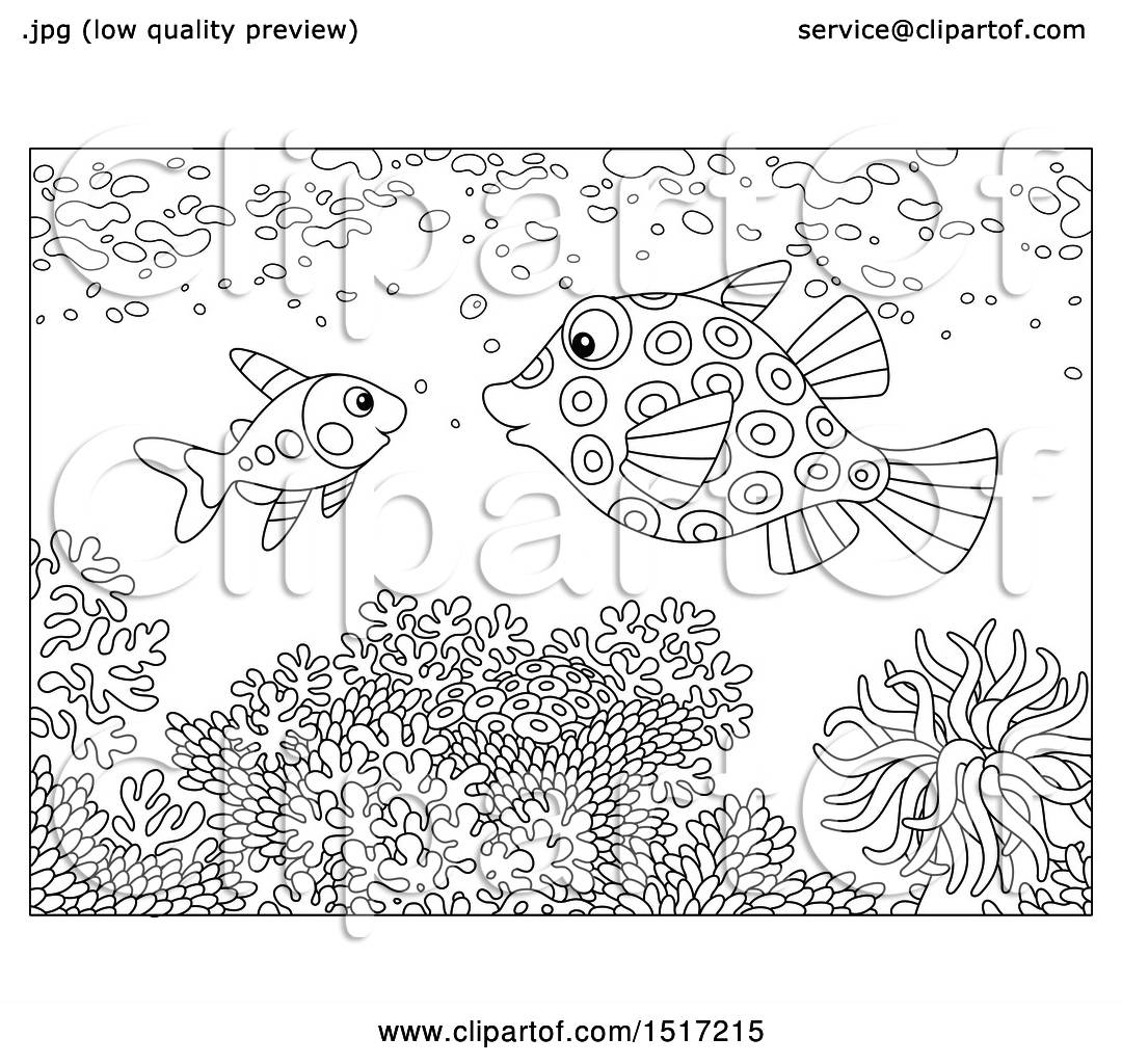 Clipart Of A Black And White Boxfish And Xray Fish At A