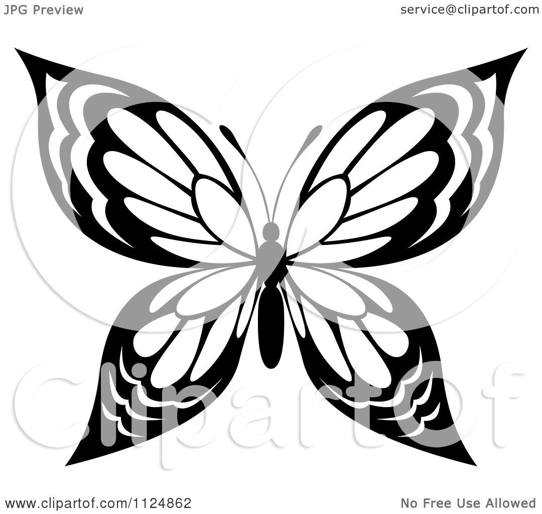 Clipart Of A Black And White Butterfly 20