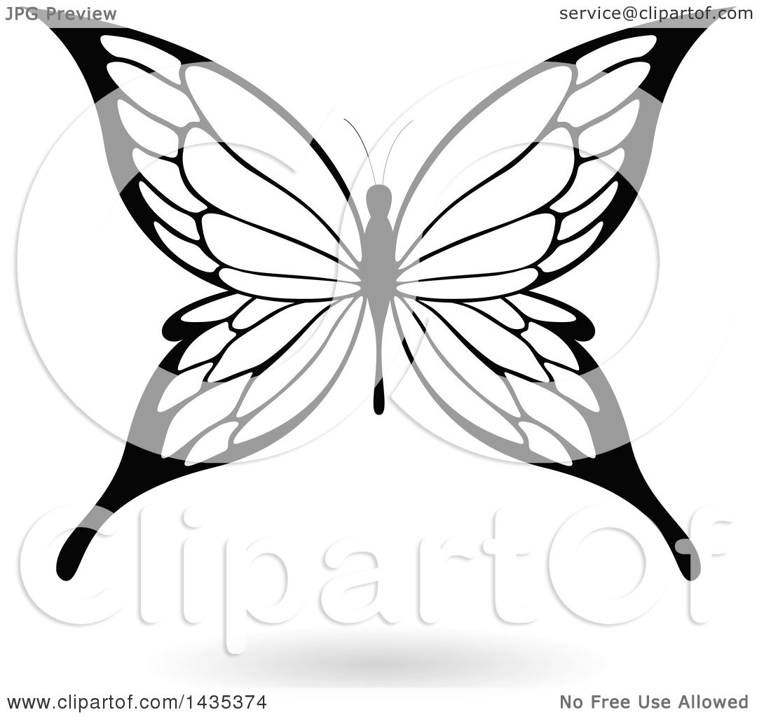 Clipart Of A Black And White Butterfly With A Shadow