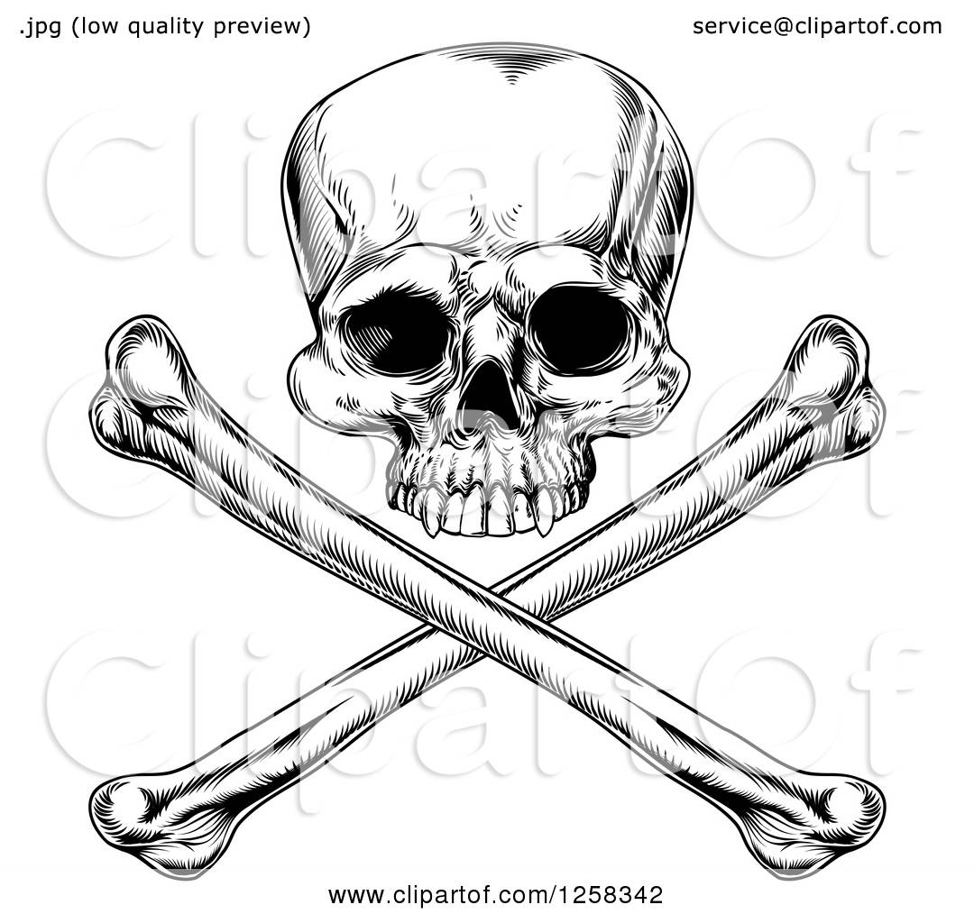 Clipart Of A Black And White Engraved Jolly Roger Skull