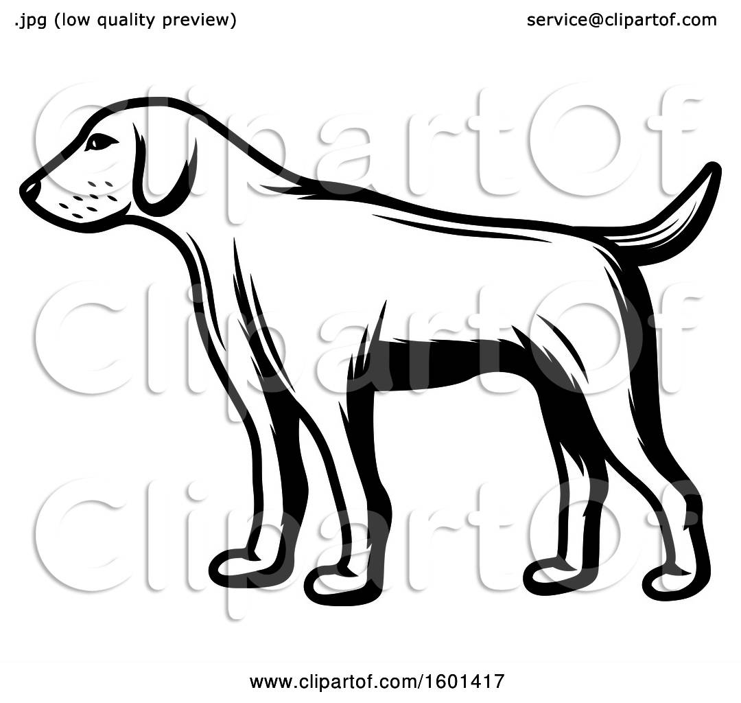 Clipart Of A Black And White Hunting Dog