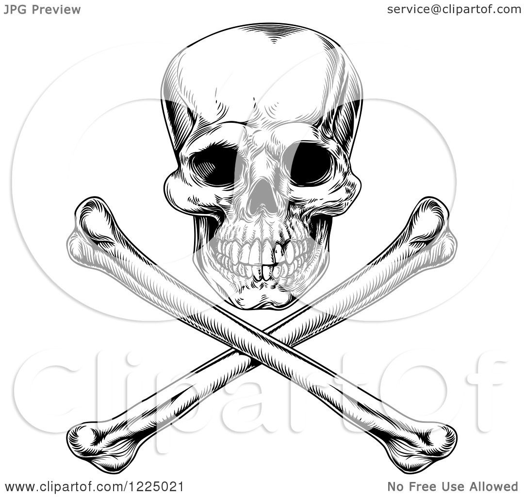 Clipart Of A Black And White Jolly Roger Skull And