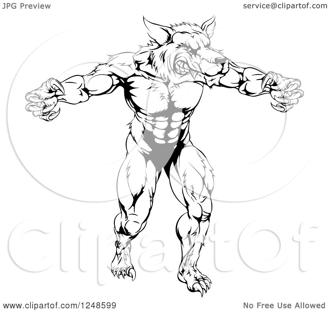 Clipart Of A Black And White Muscular Wolf Mascot Standing