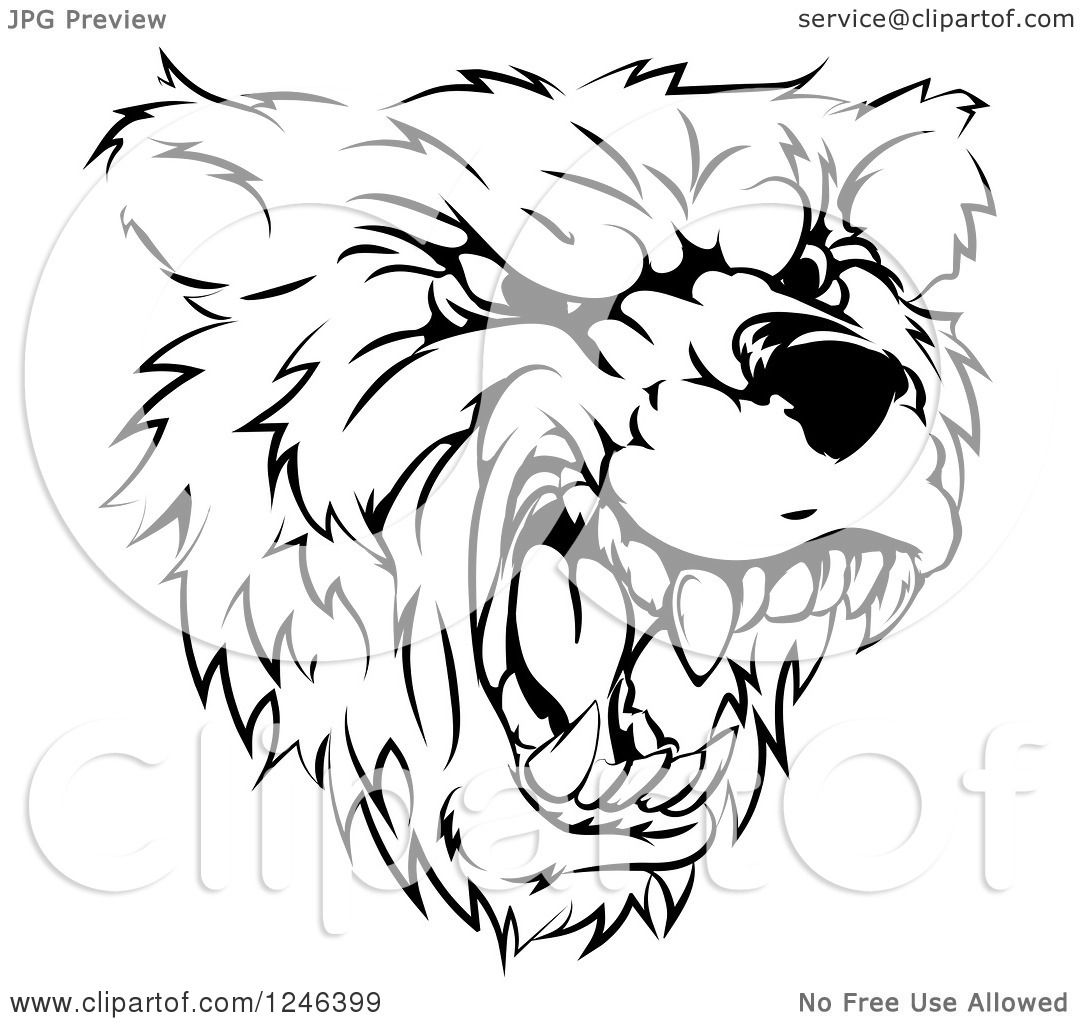 Clipart Of A Black And White Roaring Aggressive Bear