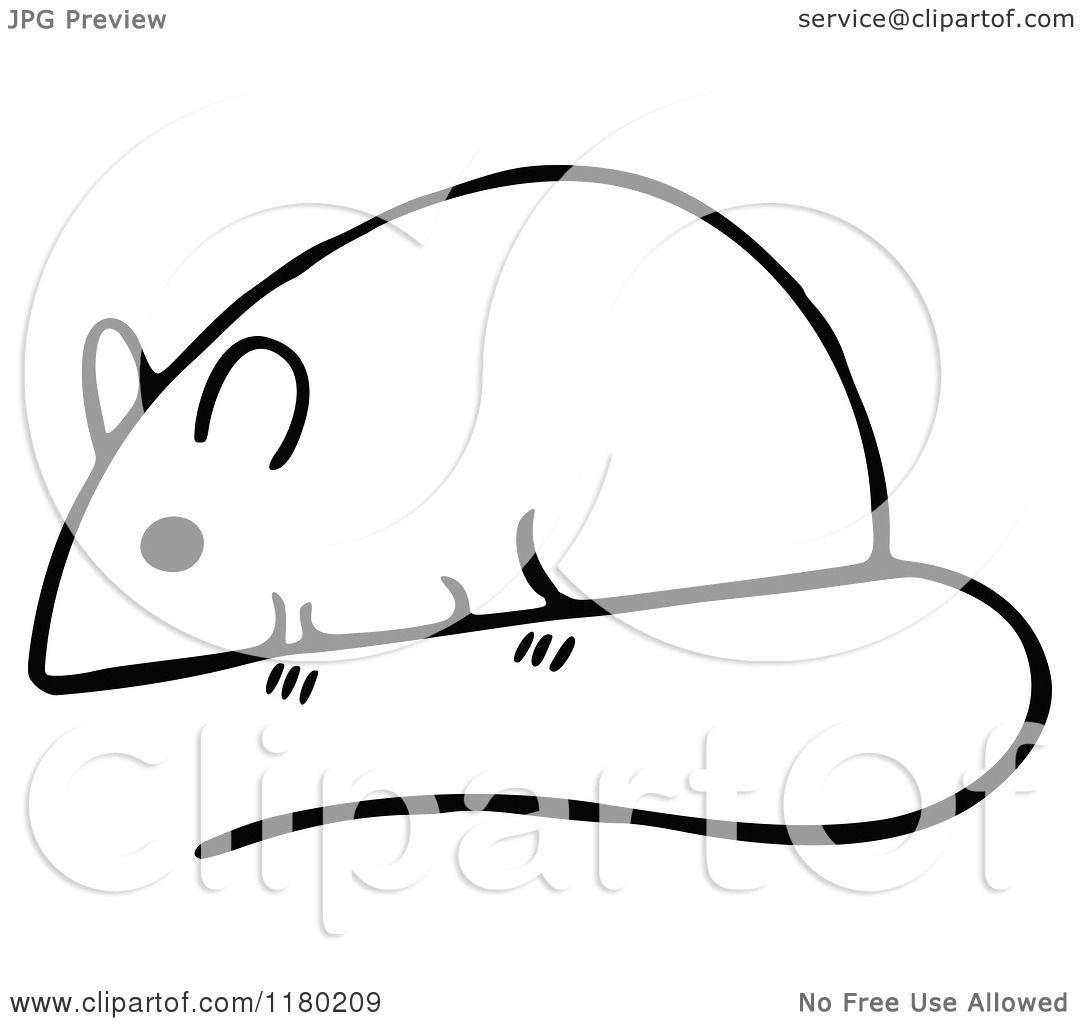 Clipart Of A Black And White Sketched Mouse 4