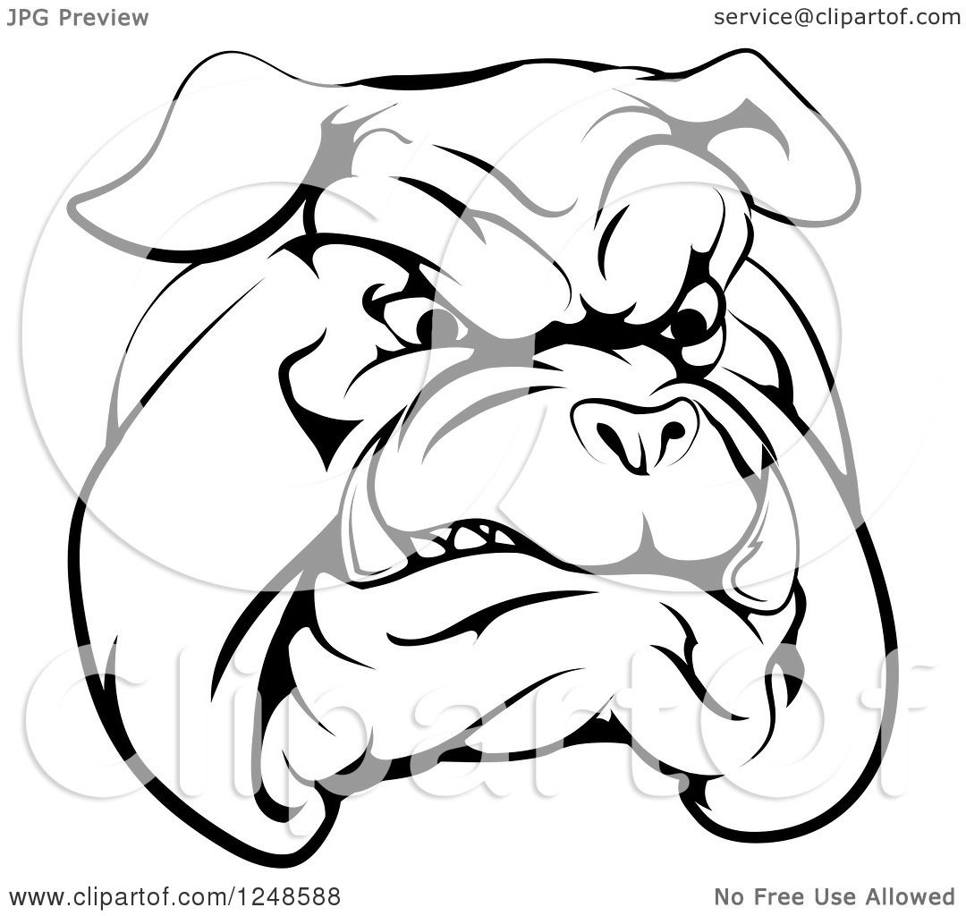 Clipart Of A Black And White Snarling Bulldog Mascot Face