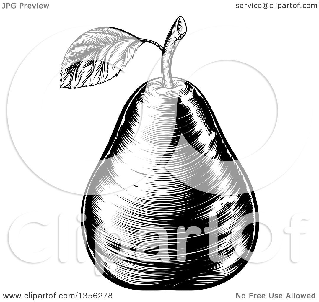 Clipart Of A Black And White Vintage Woodcut Pear