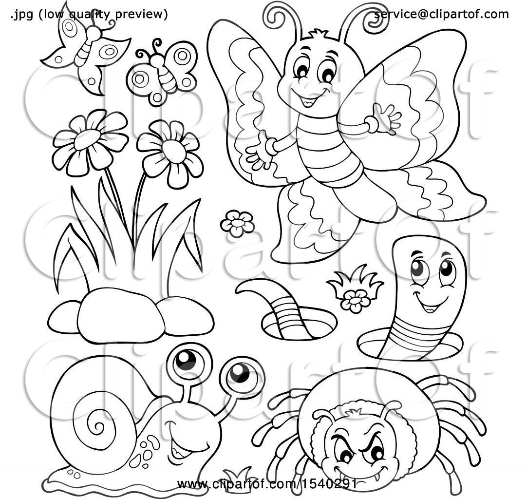 Clipart Of A Butterfly Worm Spider And Snail