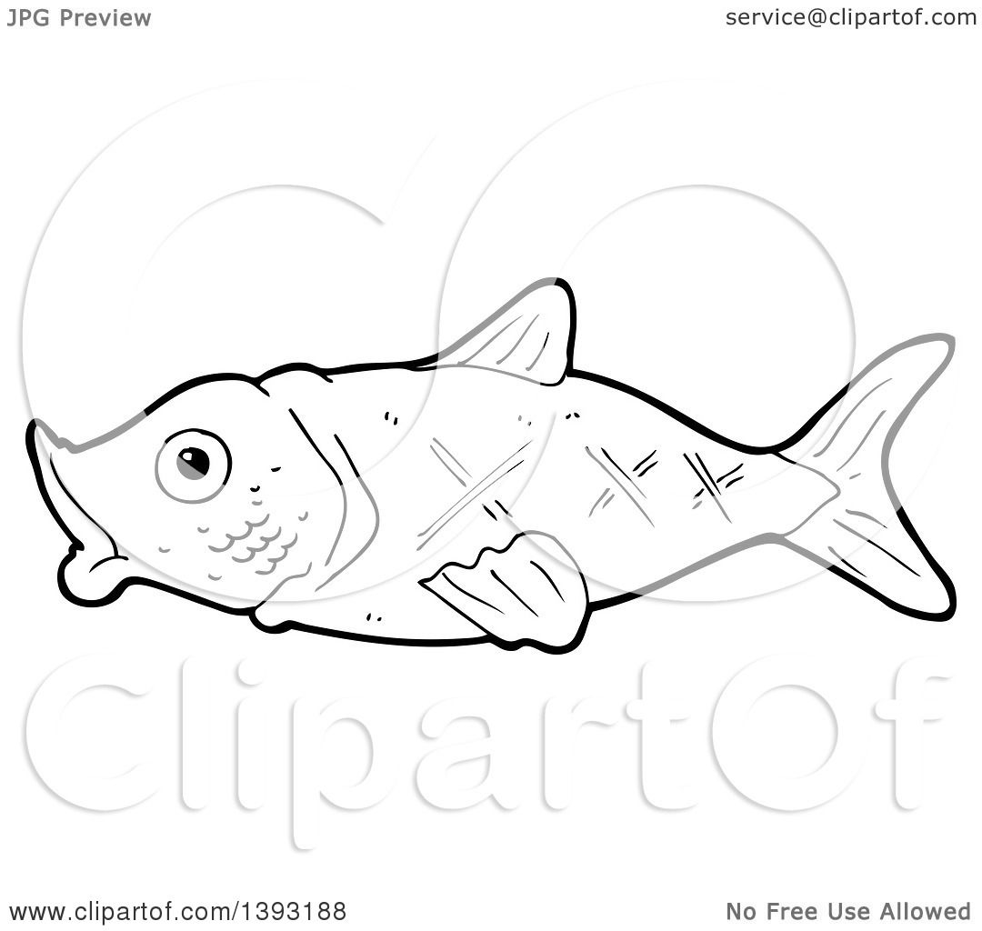 Clipart Of A Cartoon Black And White Lineart Fish