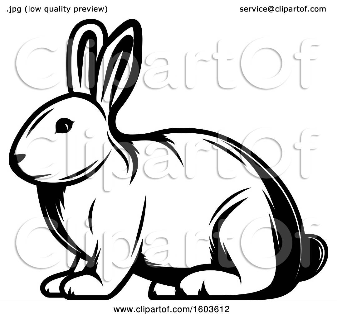 Clipart Of A Rabbit In Black And White