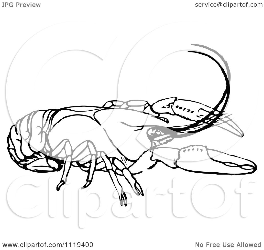 Clipart Of A Retro Vintage Black And White Crayfish