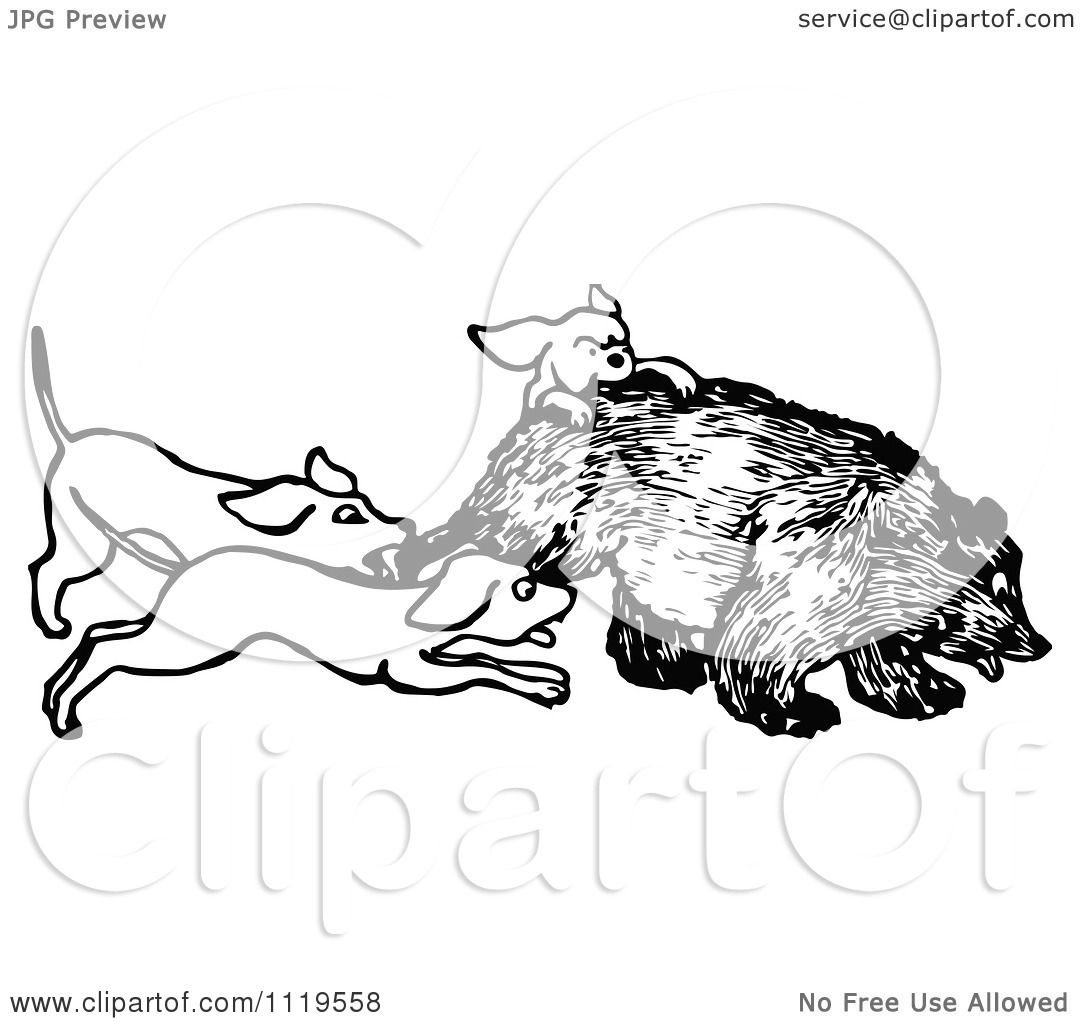 Clipart Of A Retro Vintage Black And White Hunting Dogs