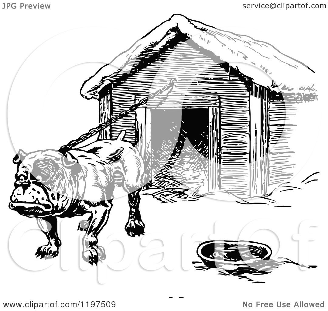 Clipart Of A Vintage Black And White Bulldog Chained To A