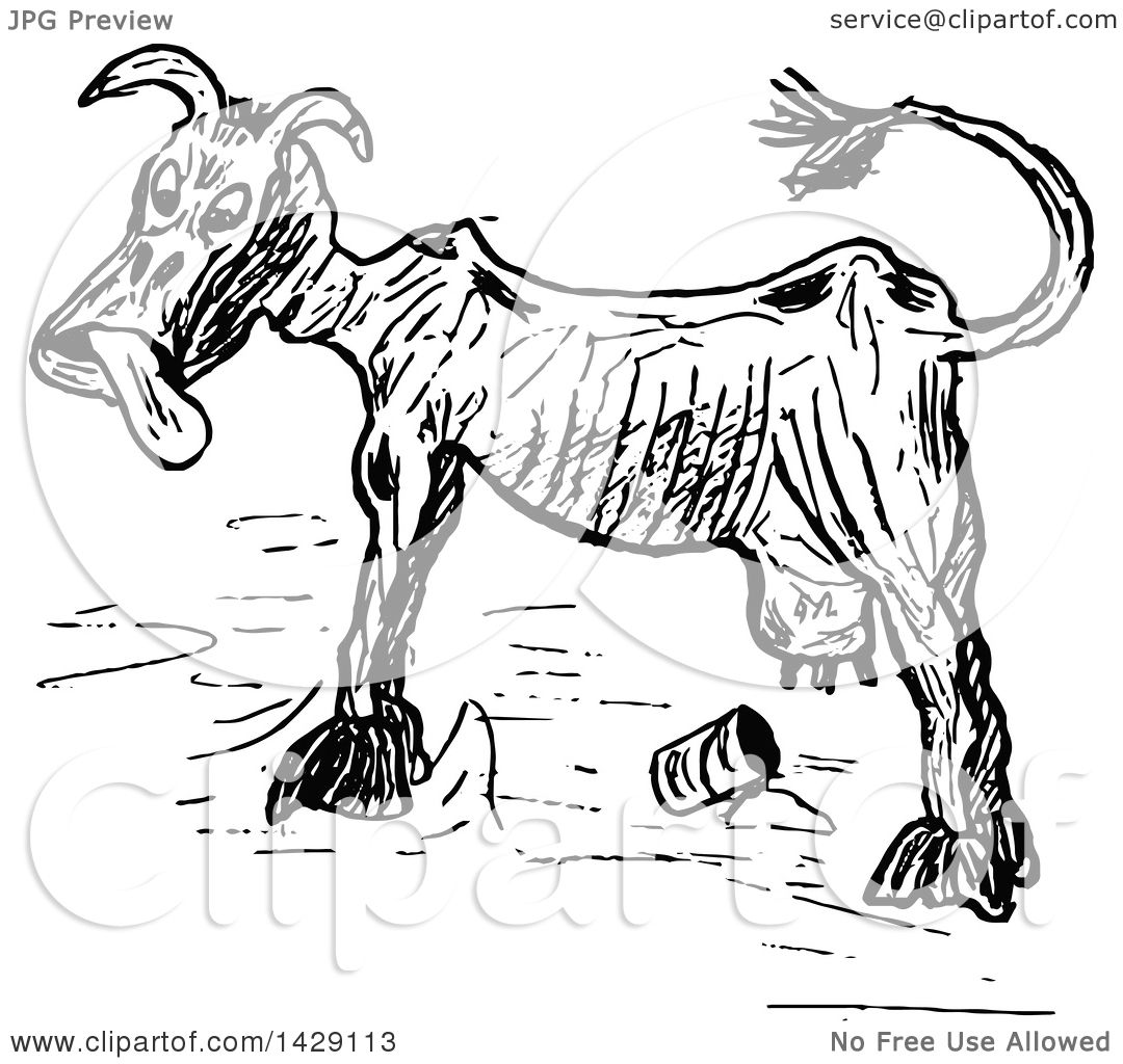 Clipart Of A Vintage Black And White Sketched Skinny Cow