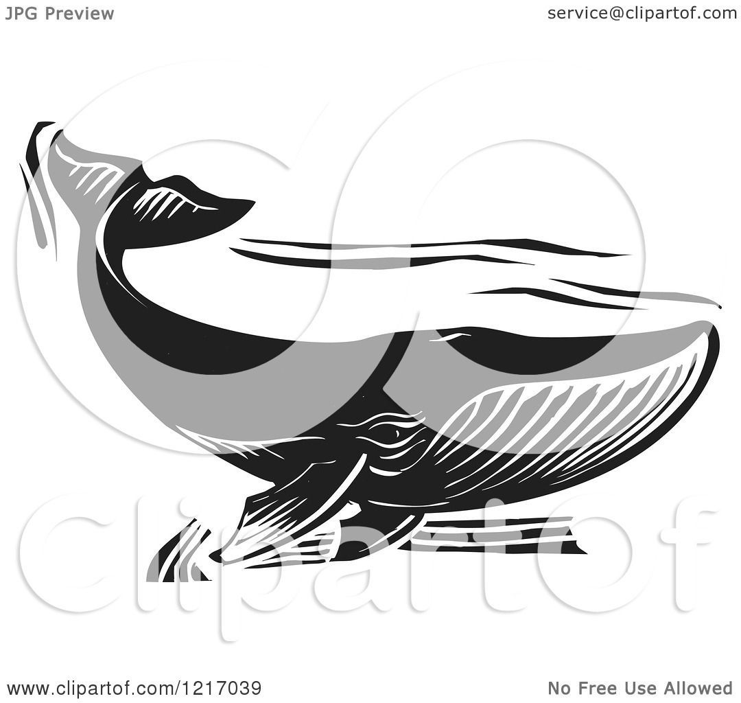 Clipart Of A Woodcut Whale Swimming In Black And White