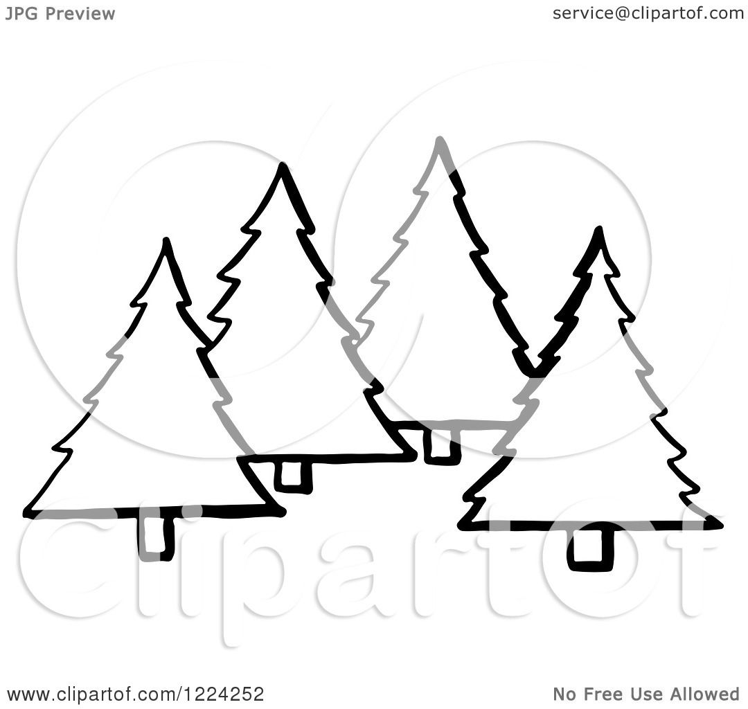 Clipart Of Black And White Evergreen Trees
