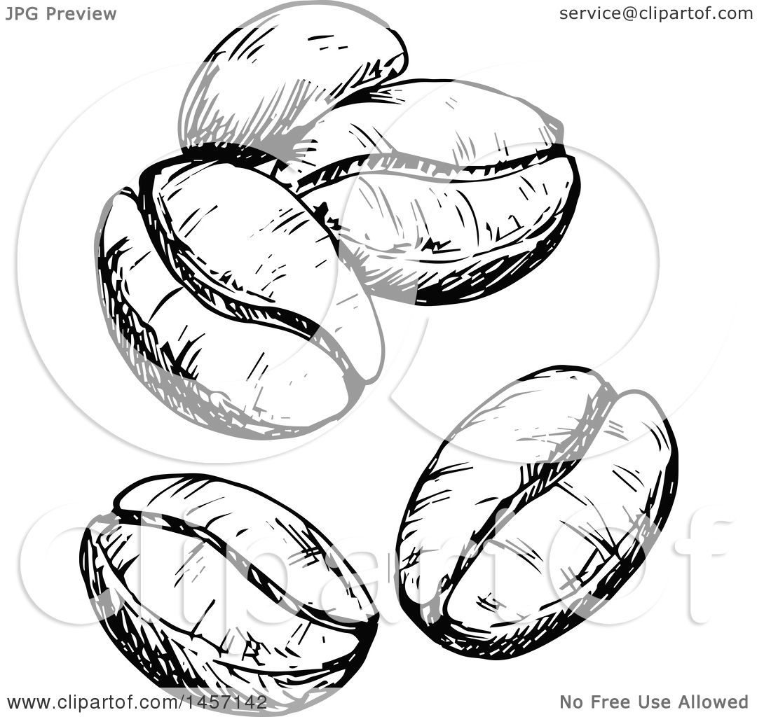 Clipart Of Black And White Sketched Coffee Beans