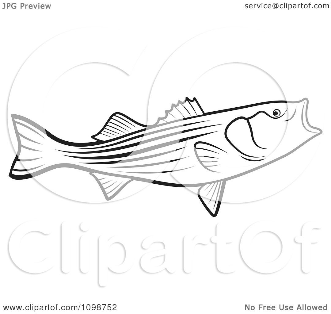 shark mouth coloring pages reinanco open shark mouth clipart