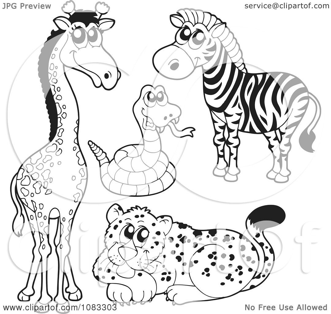 Clipart Outlined Giraffe Rattlesnake Zebra And Leopard