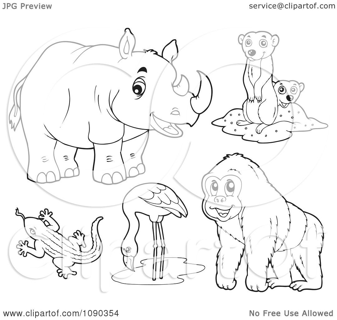Clipart Outlined Rhino Meerkat Lizard Flamingo And Gorilla