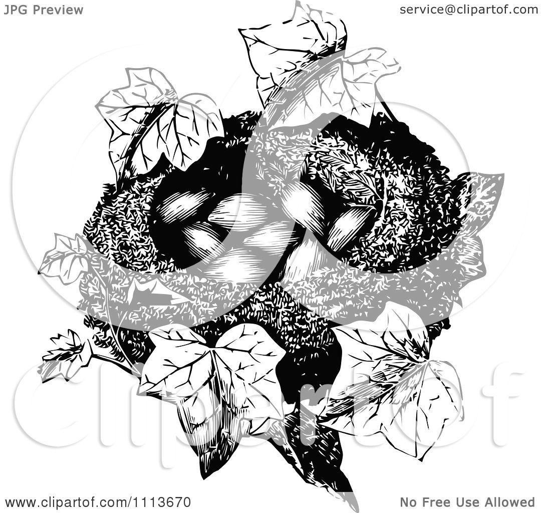 Clipart Vintage Black And White Bird Nest With Eggs And