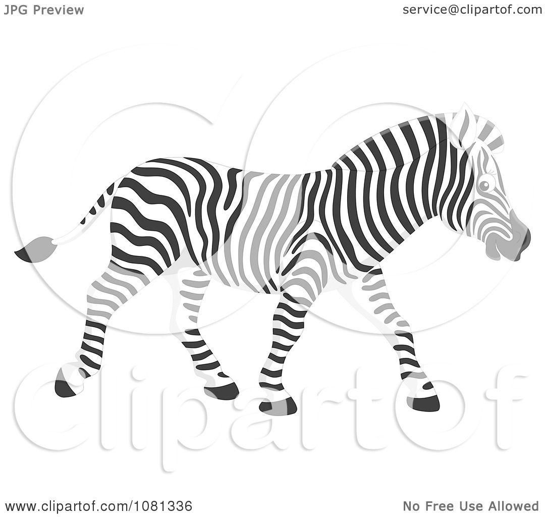 Clipart Walking Zebra
