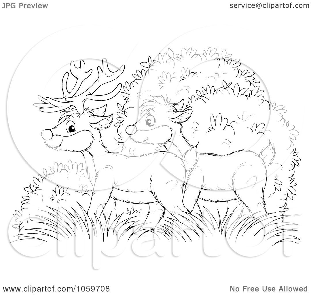 Royalty Free Clip Art Illustration Of A Coloring Page Outline Of A Deer Pair In Bushes By Alex