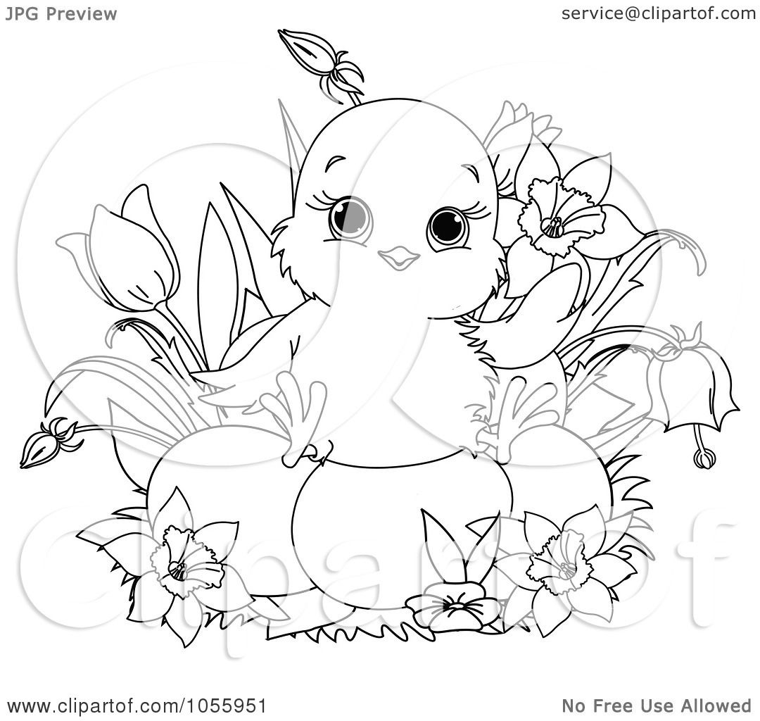 Cute Chick Coloring Pages Coloring Pages