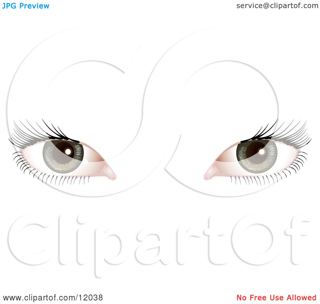 Woman S Green Eyes With Long Eye Lashes Clipart Picture By
