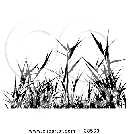 clipart victorious weed killer black and white outline royalty free