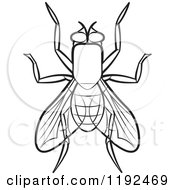 clipart of a house fly royalty free vector illustration by lal