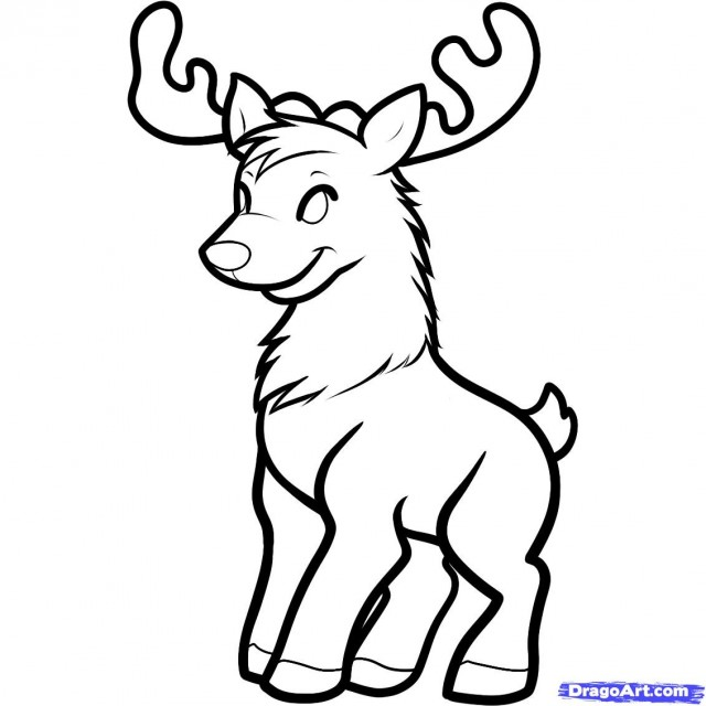 baby deer coloring pages baby deer drawing for kids viewing gallery