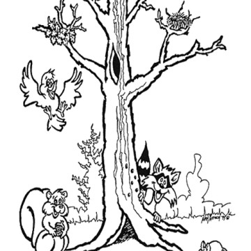 bare tree coloring page bare tree outline coloring page free