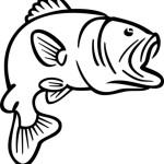 bass fish coloring pages bass fish coloring pages 150x150 jpg