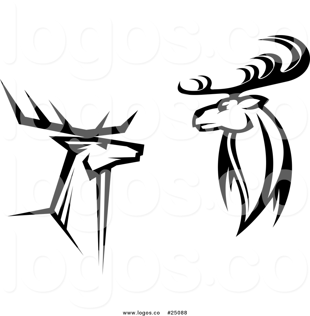 moose vs buck