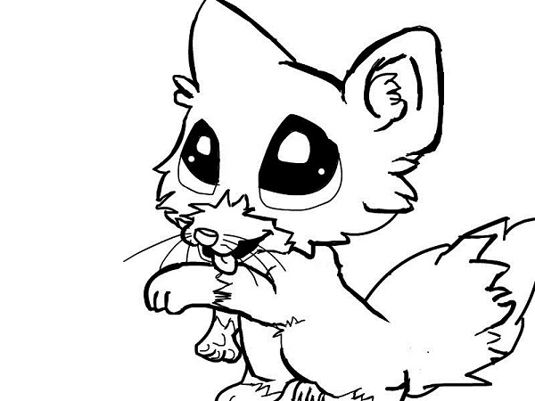 coloring pages baby wolves cooloring com