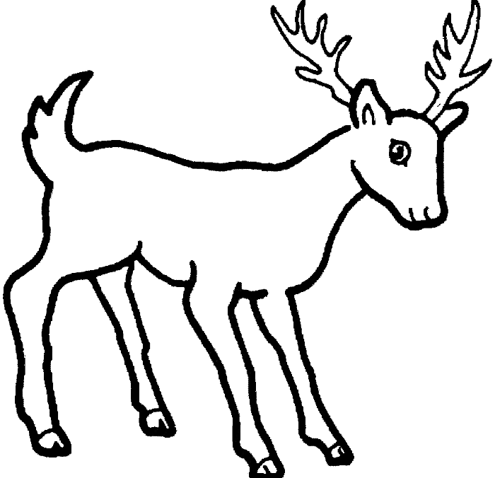 deer coloring book pages coloring pages deer printable for kids